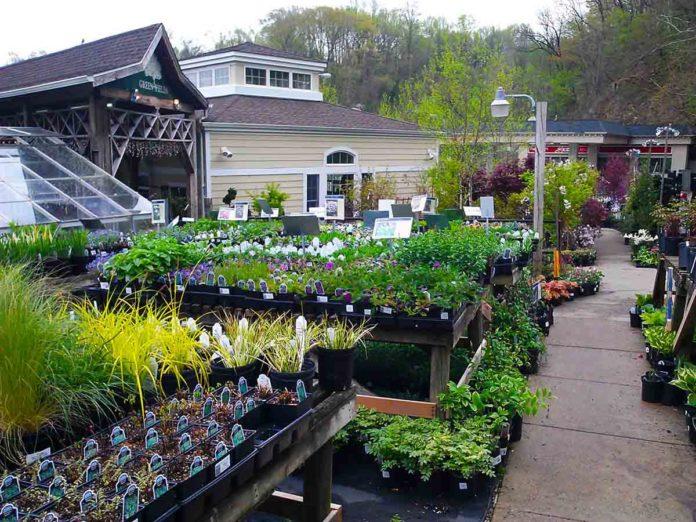 Green Fields Nursery Amp Landscaping Company